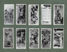 Collctable  Cigarette cards set, Whipsnade Zoo, Polar Bear, Lion Tiger, Elephant,
